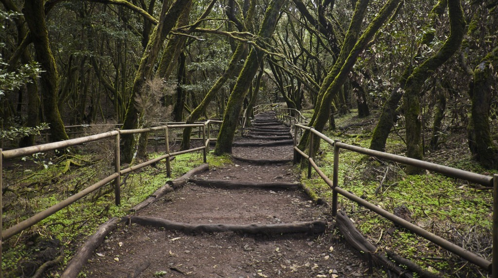puente de la constitución destinos naturales garajonay seguros rga