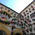 Día de Andalucía Córdoba