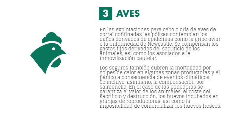 seguros pecuarios para avicultura