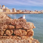 Día de Andalucía Cadiz