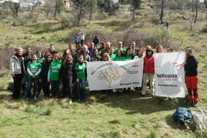 Reforestación de Santa Catalina
