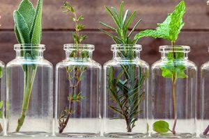 aromaterapia istock
