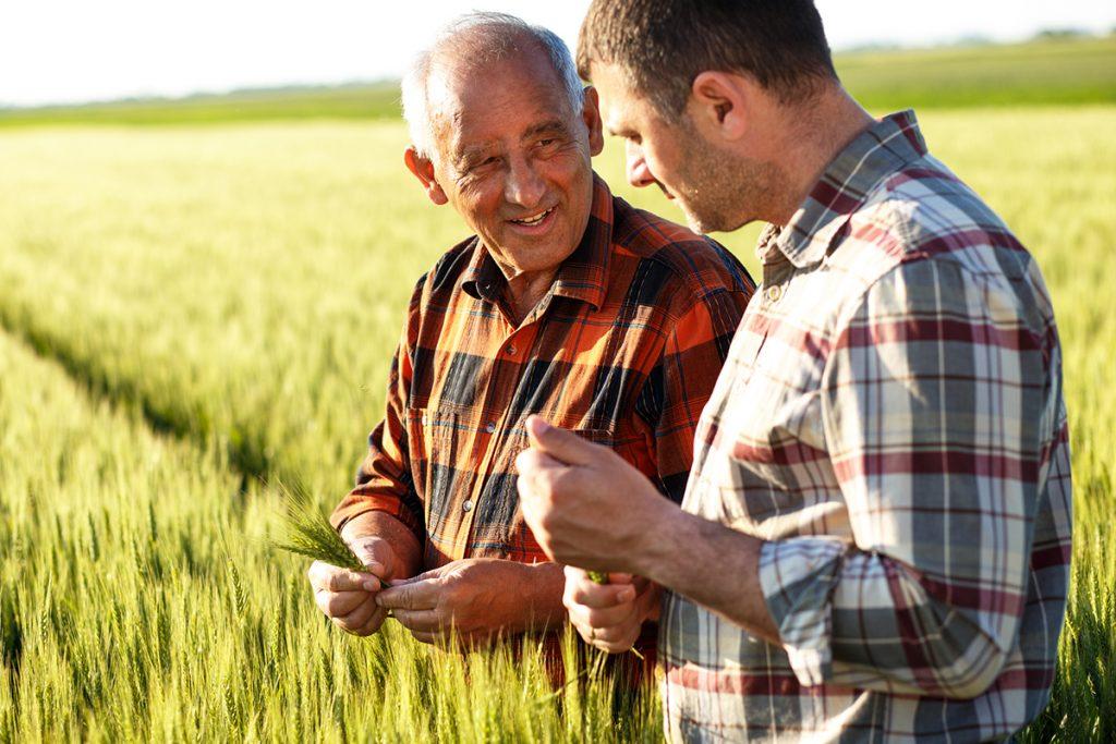 daños sector agrícola rga seguros